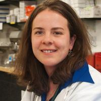 Dr. Gwenn Rosenberg, Third Stone Integrative Health