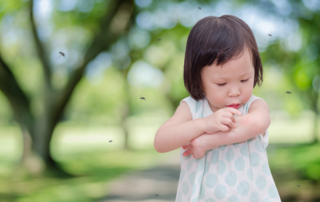 Prevention and Treatment of Bug Bites